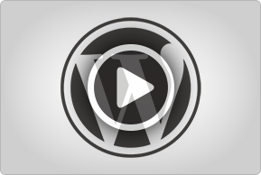 Wordpress video thumb